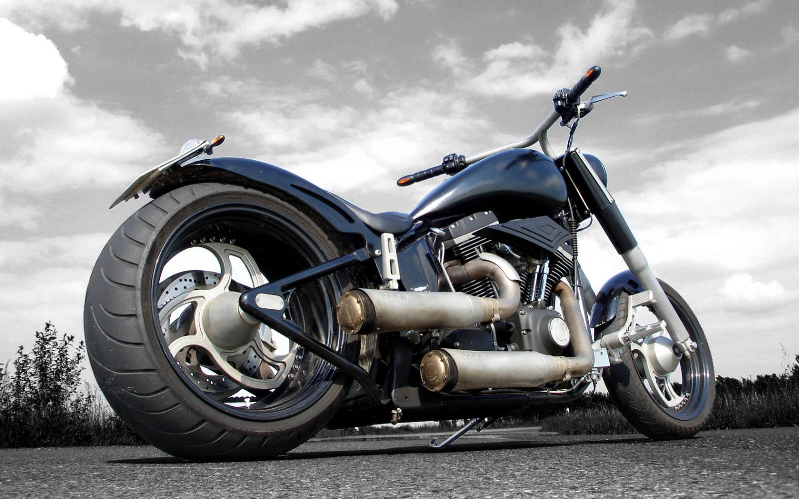 HD Harley Schubert101 Dresden